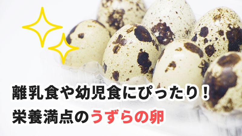離乳食や幼児食にぴったり!栄養満点のうずらの卵